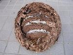 駆除したキイロスズメバチの巣は、直径30cm、巣盤は5段(福島県石川郡、2008年10月上旬).jpg