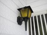 玄関の街灯に作ったハチの巣(福島県白河市、2009年7月9日).jpg