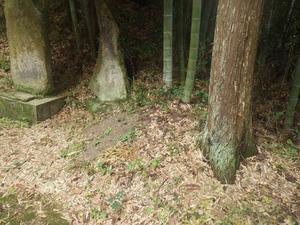 オオスズメバチの巣があった神社の境内(郡山市).jpg