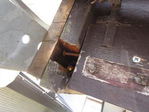 キイロスズメバチが出入りする屋根の小さな隙間 福島県岩瀬郡、7月下旬