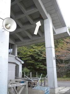 キイロスズメバチの巣が中学校体育館の天井に(福島県西白河郡、2010年10月中旬).jpg
