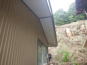 キイロスズメバチの巣が屋根裏にある建物(川俣町、2013年9月11日).jpg