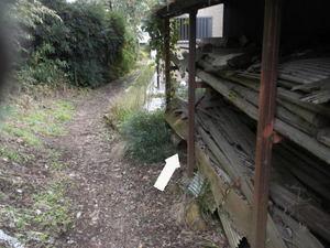 キイロスズメバチの巣は小道そばの空き缶の中(郡山市、2010年10月中旬).jpg