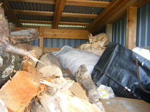 キイロスズメバチの巣は薪の上に放置した米袋の中 福島県西白河郡、7月下旬