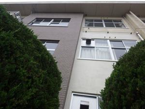 キイロスズメバチの巣は3階の軒下(福島県三春町).jpg