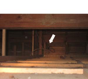 キイロスズメバチの玄関屋根裏の巣(風呂場の天井から)いわき市、7月下旬