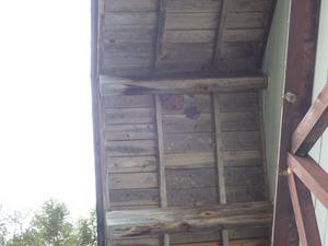 キイロスズメバチの軒下の巣(北塩原村、2014年10月1日).jpg