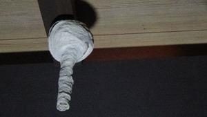 コガタスズメバチの典型的なトックリ型の初期巣(郡山市).jpg