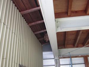 コガタスズメバチの巣が物置の奥まった天井に 西白河郡、9月上旬.jpg
