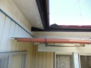 スズメバチが出入りする西側屋根の様子 福島、8月初旬