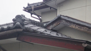 スズメバチが屋根の隙間から出入り(須賀川市).jpg
