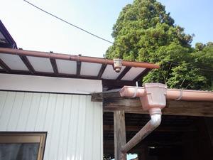 スズメバチが屋根裏に潜り込む(白河市、2015年7月26日).jpg
