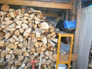 スズメバチが薪を積んだ小屋からブンブン 福島県西白河郡、7月下旬