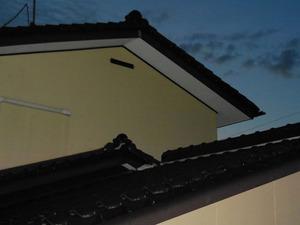 スズメバチが2階の通気口から出入り 郡山市、8月上旬