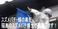 スズメバチ・蜂の巣を福島のスズメバチ博士が駆除します.jpg