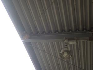 トラックヤードのキイロスズメバチの引っ越し巣(本宮市).jpg