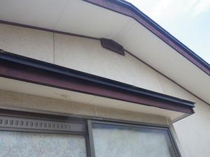 福島市で屋根裏のハチ駆除