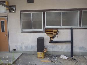 三春町でミツバチ駆除の現場.jpg
