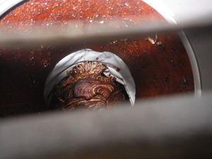 三春町で換気扇のスズメバチの巣.jpg