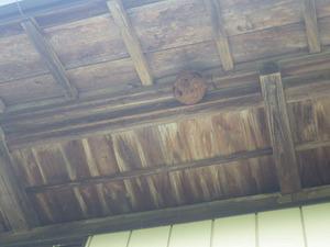 二本松市で軒下のスズメバチの巣.jpg