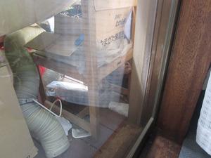 居間の窓越しに見えるスズメバチの巣 郡山市、7月中旬