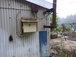 川俣町でスズメバチ駆除の現場.jpg