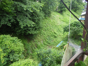 田村市でスズメバチの引っ越し巣の場所から見下ろす.jpg