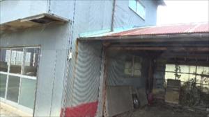 田村市でスズメバチ駆除の現場.png