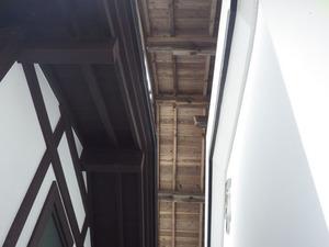 矢吹町でスズメバチ駆除の現場.jpg