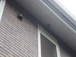 石川町で2階軒下のスズメバチの引っ越し巣.jpg