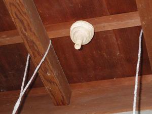 郡山市でトックリ型のスズメバチの巣.jpg