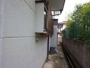 郡山市で外壁にスズメバチの巣.jpg