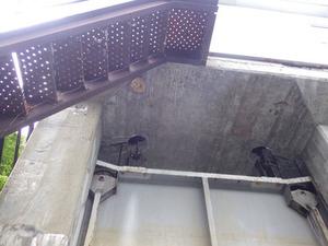 郡山市で施設の天井にスズメバチの巣.jpg